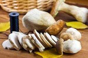 Як сушити білі гриби  - Домашні хитрощі 8455b877bdd89
